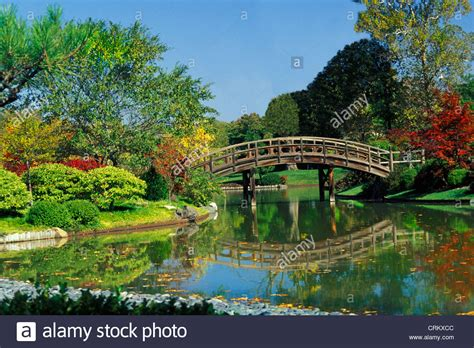 St Louis Botanical Garden Hours Wooden Curved Bridge Pond In The Missouri Botanical Garden St Stock Photo Royalty Free