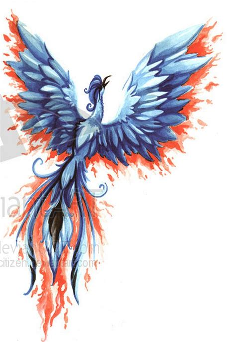 feminine phoenix tattoo designs 1000 ideas about bird tattoos on
