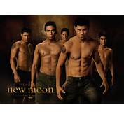 The Wolf Pack Pictures  Twilight Saga Wolves Photo 26678961