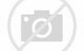 Motor Drag Satria Thailand
