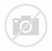 Hijab Anime Girl Tumblr