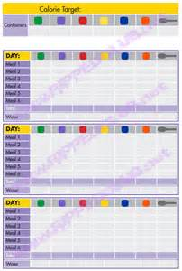 21 day fix nutrition plan portion control hell rippedclub
