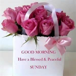 Good sunday good morning have a blessed