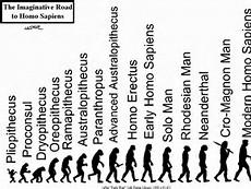 Evolution Human Homo Sapiens