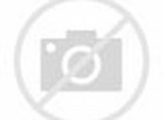 gambar kebun bunga