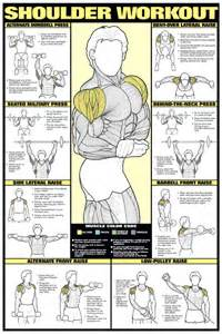 Men s shoulder workout wall chart poster fitness gym workout