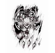 Tiger Detail Tattoo By Shellvia Blackthorn D36cle4jpg