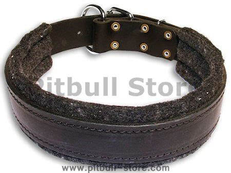Leather Collar With Hello 20 Mm X 45 Cm leather collar with thick felt for all breeds 1 5 width c24 1077 wide leather collar 1 1