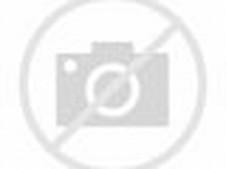 bange nih pemandangan danau di gambar ini. Terlihat sangat indah ...