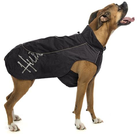 raincoats for dogs raincoat for dogs lookup beforebuying