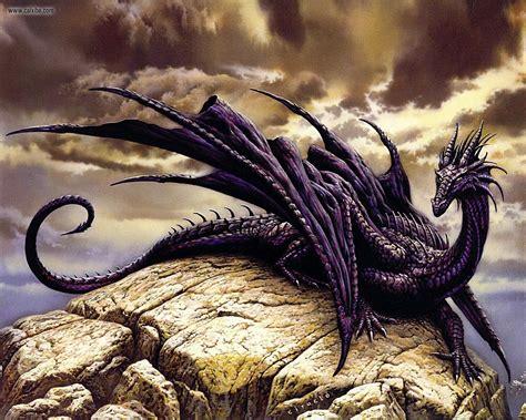 dragon s amethyst dragon ya chit chat