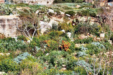 giardino ipogeo viaggio in sicilia 05 marzo 2006