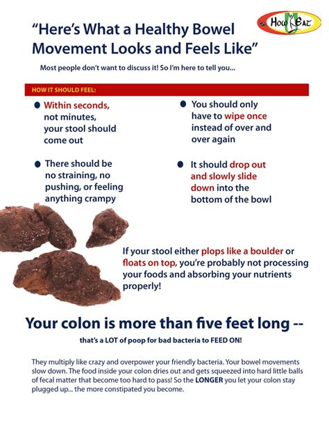 Colon Cancer And Blood In Stool by Healthy Bowel Movements Health