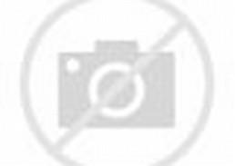 Cara Memakai Jilbab Segi Empat Terbaru