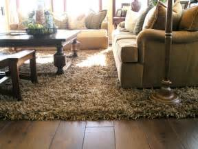 Custom Area Rugs Online Add Luxury And Comfort To Your Living Room With Shag Rugs Albanian Journalism