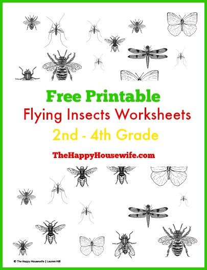 printable pictures insects 31 days of read alouds over in the meadow the happy