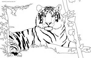 Free Printable Tiger Coloring Pages For Kids sketch template