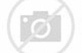 Merpati adalah burung yang tidak pernah