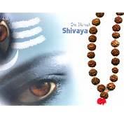 Suryas Blog Lord Siva
