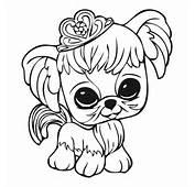 Little Pet Shop Kolorowanki Drukowania Dla Dzieci Car Pictures