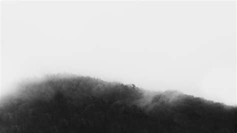 tumblr themes black and white pictures black tumblr wallpaper