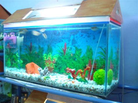 Pompa Celup Goldfish indian home fish aquarium