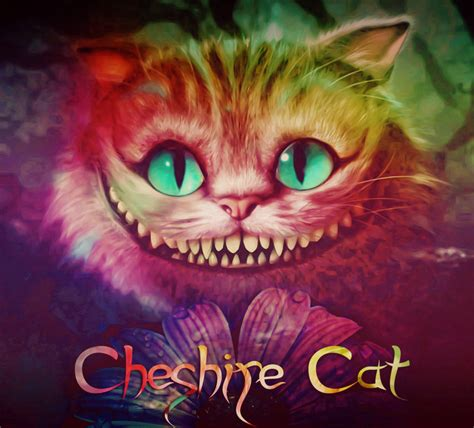 cheshire cat wallpaper android cheshire cat wallpaper wallpapersafari