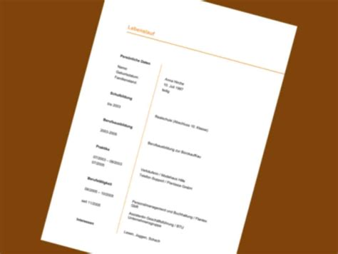 Bewerbung Mini Vorlage 21 lebenslauf vordruck designvorlagen