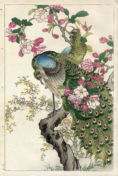 free printable japanese art peacock apple blossom by bairei kono flower and bird