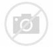 Gambar Lucu Indonesia