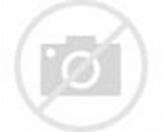 George Eastman Kodak Box Camera