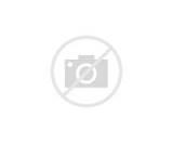 Coloriage La famille de loup-garou. Les chiots : Wally, Winnie et ...
