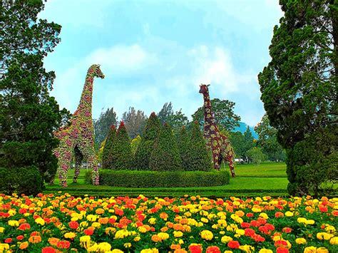 nusantara flower garden west java vacation packages