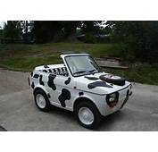 STRANGE LITTLE COW CAR  MINI CONVERTIBLE