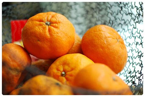 new year oranges exchange mandarin orange marmalade let s jam away jo the tart