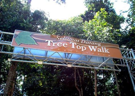 Trees Top Murah the tale of faez hanafiah 10 tempat pelancongan di kedah