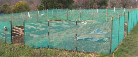Superb Vegetable Garden Fencing #3: 05.jpg