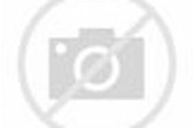 Kaligrafi Bismillah Bentuk Burung