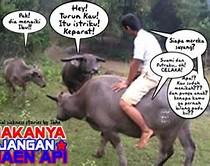 Pin Kata Lucu Dan Gokil Klinik Tong Fang Blogadexme Pelautscom on ...