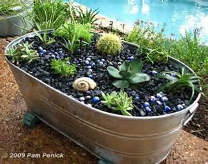 cactus planter galvanized planters gone wild diggingdigging