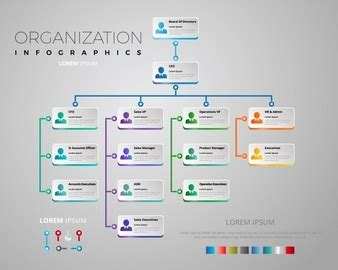 Organization Chart Vectors Photos And Psd Files Free Download Adobe Illustrator Org Chart Template