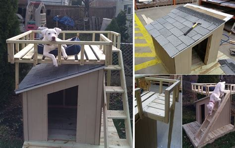how to build a nice dog house 10 free dog house plans icreatived