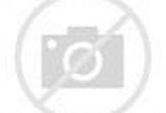 Monkey Smiling at Camera