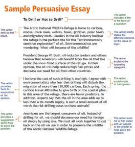 argumentative research essay kids