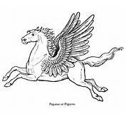 Line Drawing Of Pegasus