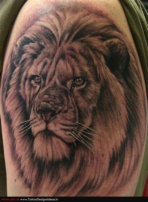 lion tattoo hd photo lion tattoo designs tattoo shop 36 free hd wallpapers