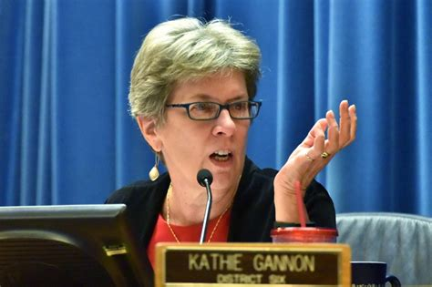 Who Was The Presiding Officer At The Constitutional Convention by The Dekalb County Commission Elects Kathie Gannon As