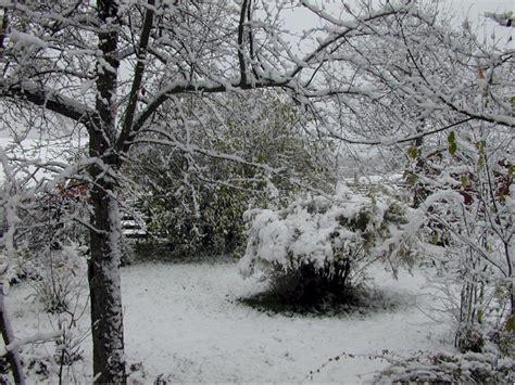 Gardenia Winter Winter