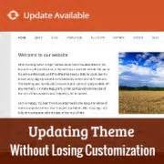 wordpress themes without pictures how to update wordpress theme without losing customization