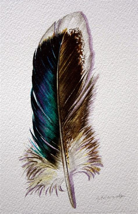 watercolor tattoo quill watercolor feather study inspirations that inspires